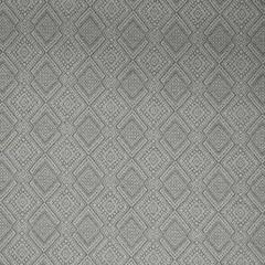 35551-11 IGUAZU Platinum Kravet Fabric
