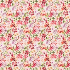 IMRAN 2 Sorbet Stout Fabric