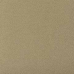 LENOX-130 LENOX Elm Kravet Fabric
