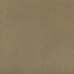 LENOX-303 LENOX Bayleaf Kravet Fabric