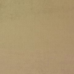 LOPEZ Vintage Gold 881 Norbar Fabric