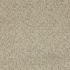 LZ-30217-06 EARTH Kravet Fabric
