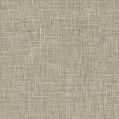 MINA TEXTURE Ash Kasmir Fabric