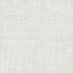 MINA TEXTURE Talc Kasmir Fabric