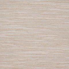 ODOMETER 2 Blush Stout Fabric