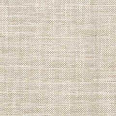 35768-106 Kravet Fabric