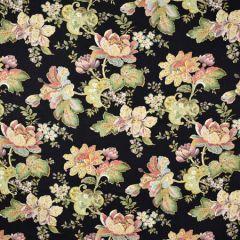 S2016 Noir Greenhouse Fabric