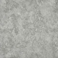 S2046 Silver Greenhouse Fabric