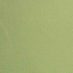 S2246 Lawn Greenhouse Fabric