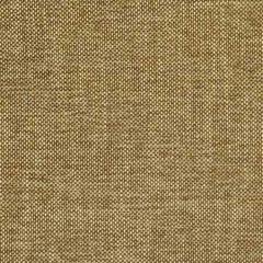 S2287 Mocha Greenhouse Fabric