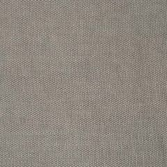 S2548 Cement Greenhouse Fabric
