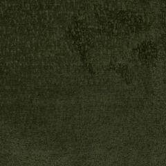 S2753 Green Greenhouse Fabric