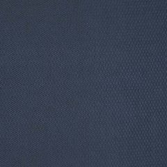 S2767 Blue Greenhouse Fabric