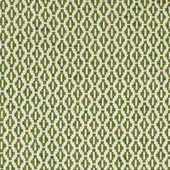 S2855 Fern Greenhouse Fabric