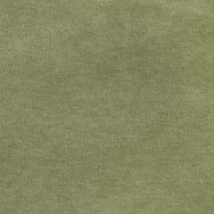 S2862 Lilypad Greenhouse Fabric