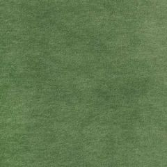 S2875 Fern Greenhouse Fabric