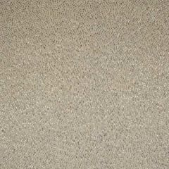 S2966 Dove Grey Greenhouse Fabric