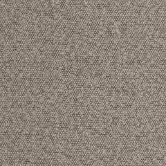 S2979 Pebble Greenhouse Fabric