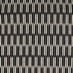S2989 Zebra Greenhouse Fabric