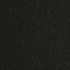 S2990 Black Greenhouse Fabric