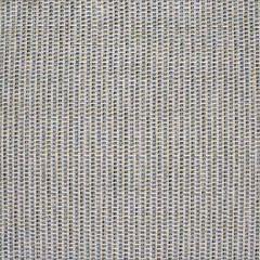 S3013 Lapis Greenhouse Fabric