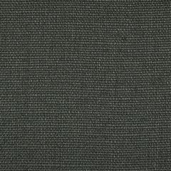 S3307 Slate Greenhouse Fabric