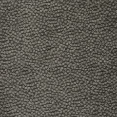S3597 Charcoal Greenhouse Fabric
