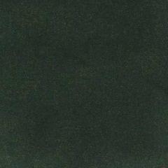 S4055 Juniper Greenhouse Fabric