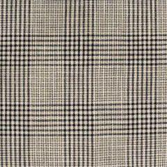 S4081 Newsprint Greenhouse Fabric