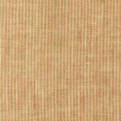 SACHET 4 PUMPKIN Stout Fabric