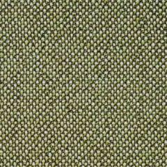 SC 0021 27249 CITY TWEED Bonsai Scalamandre Fabric
