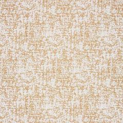 27027-001 ACACIA Palomino Scalamandre Fabric