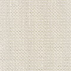 27133-001 FLORET EMBROIDERY Champagne Scalamandre Fabric