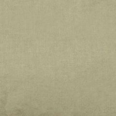 36288-002 ACADEMY Bisque Scalamandre Fabric