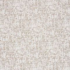 27027-003 ACACIA Ash Scalamandre Fabric
