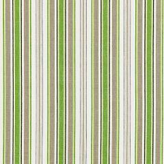 27113-003 ANDOVER COTTON STRIPE Green Tea Scalamandre Fabric
