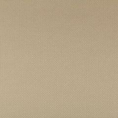 SIDNEY-106 SIDNEY Bronze Kravet Fabric