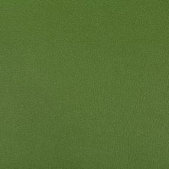 SYRUS-303 SYRUS Bonsai Kravet Fabric