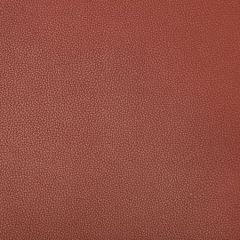 SYRUS-924 SYRUS Sienna Kravet Fabric
