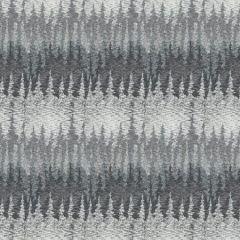 W3623-21 ALPS  Kravet Wallpaper