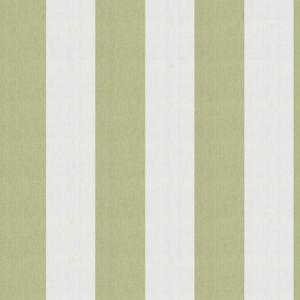 SKI STRIPE Celery Fabricut Fabric