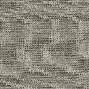INSCRIBED Smoke Fabricut Fabric