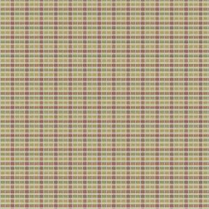 04801 Fruit Punch Trend Fabric