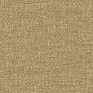 Kravet Contract 34961-1616 Fabric
