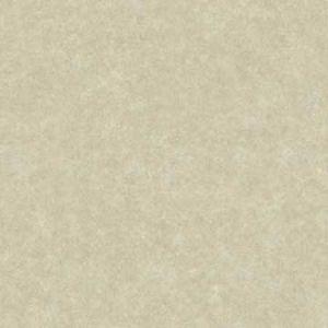 2896-25361 Cielo Sponged Metallic Champagne Brewster Wallpaper