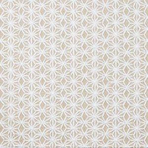 35798-116 Kravet Fabric