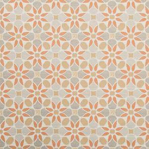 35882-24 TIEPOLO Spice Kravet Fabric