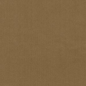 35916-66 Kravet Fabric