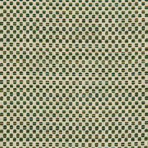36090-313 Kravet Fabric