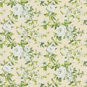 WRENTHAM Stout Fabric
